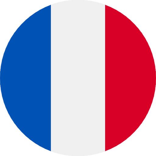 Francouzský jazyk